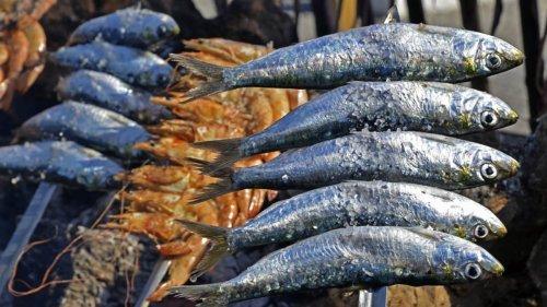fresh fish bbq maldives