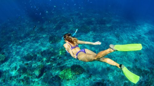 Maldives snorkel Holiday Innahura